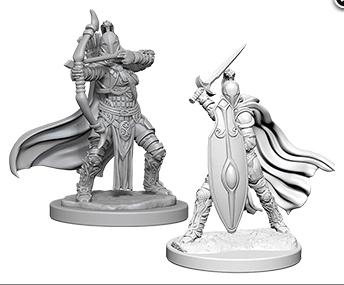 Female Knights / Grey Maidens
