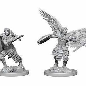 Aasimar Male Fighter