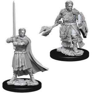 Nolzur's Marvelous Miniatures: Male Human Cleric