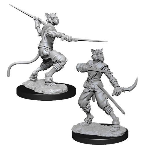 Nolzur's Marvelous Miniatures: Male Tabaxi Rogue