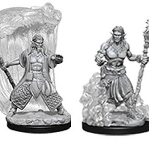 Nolzur's Marvelous Miniatures: Male Water Genasi Druid
