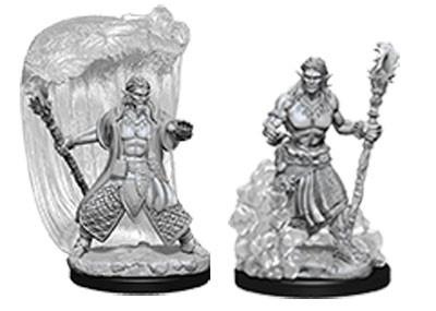 Nolzur's Marvelous Miniatures: Male Water Genasi Druid