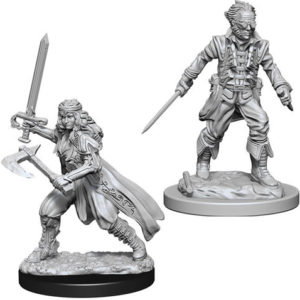 Nolzur's Marvelous Miniatures: Vampire Hunters